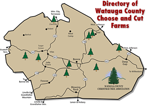 2019 Choose and Cut Christmas Tree Farms Map Watauga County North Carolina